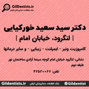 دکتر سید سعید خورکیایی