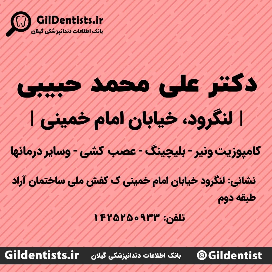 دکتر علی محمد حبیبی